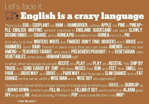 Image result for Language Fun